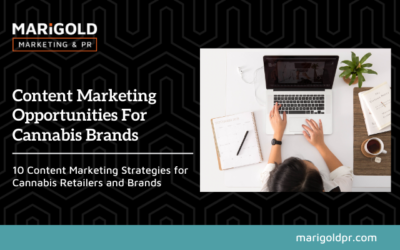 Content Marketing Opportunities For Cannabis Brands