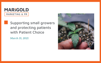 Supporting small growers and protecting patients with Patient Choice