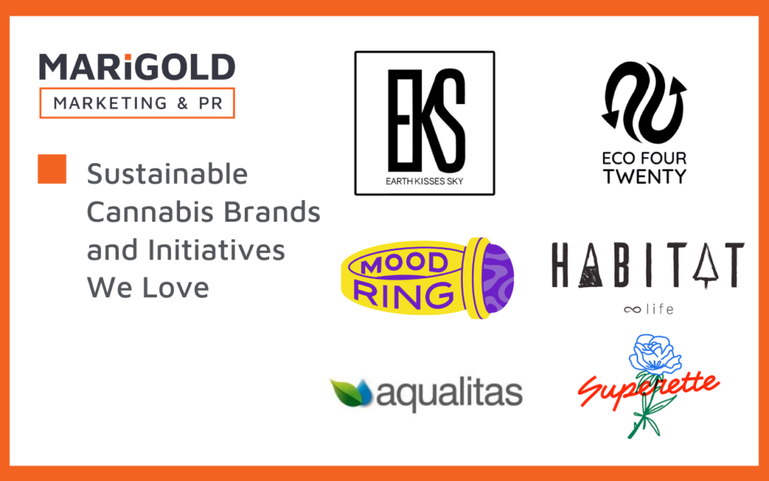 Sustainable Cannabis Brands and Initiatives We Love